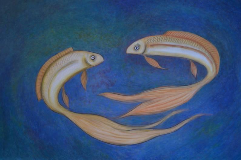 Pesci combattenti